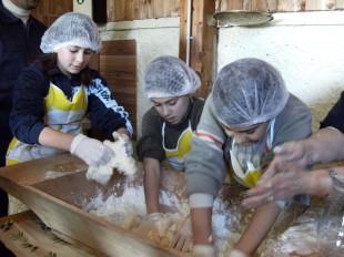Laboratorio di cucina: rubiamo l'uovo alla gallina